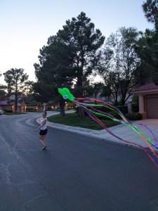 kite-flying-jelly-fish-kite-quarantine-activities