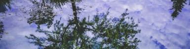cropped-reflections.jpeg
