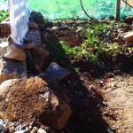 permaculture garden - messy area of soil and rocks