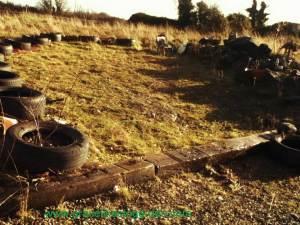 tyre-garden