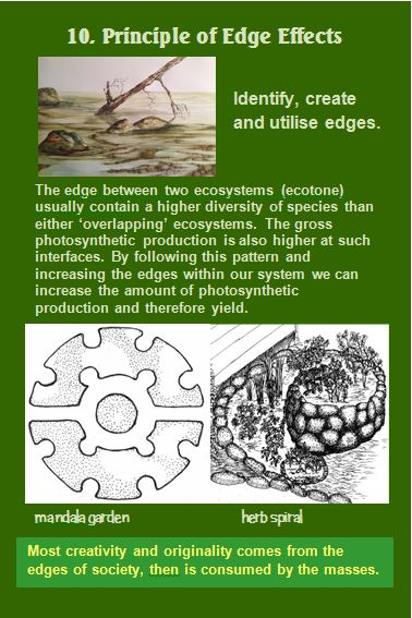 Permaculture Principle of Edge Effect Card 10