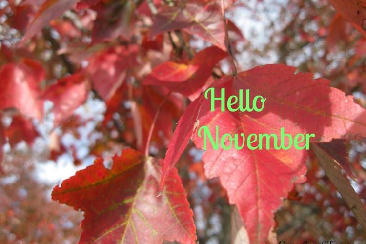 Oh, Hello November