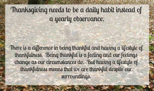 lifestyle of thankfulness