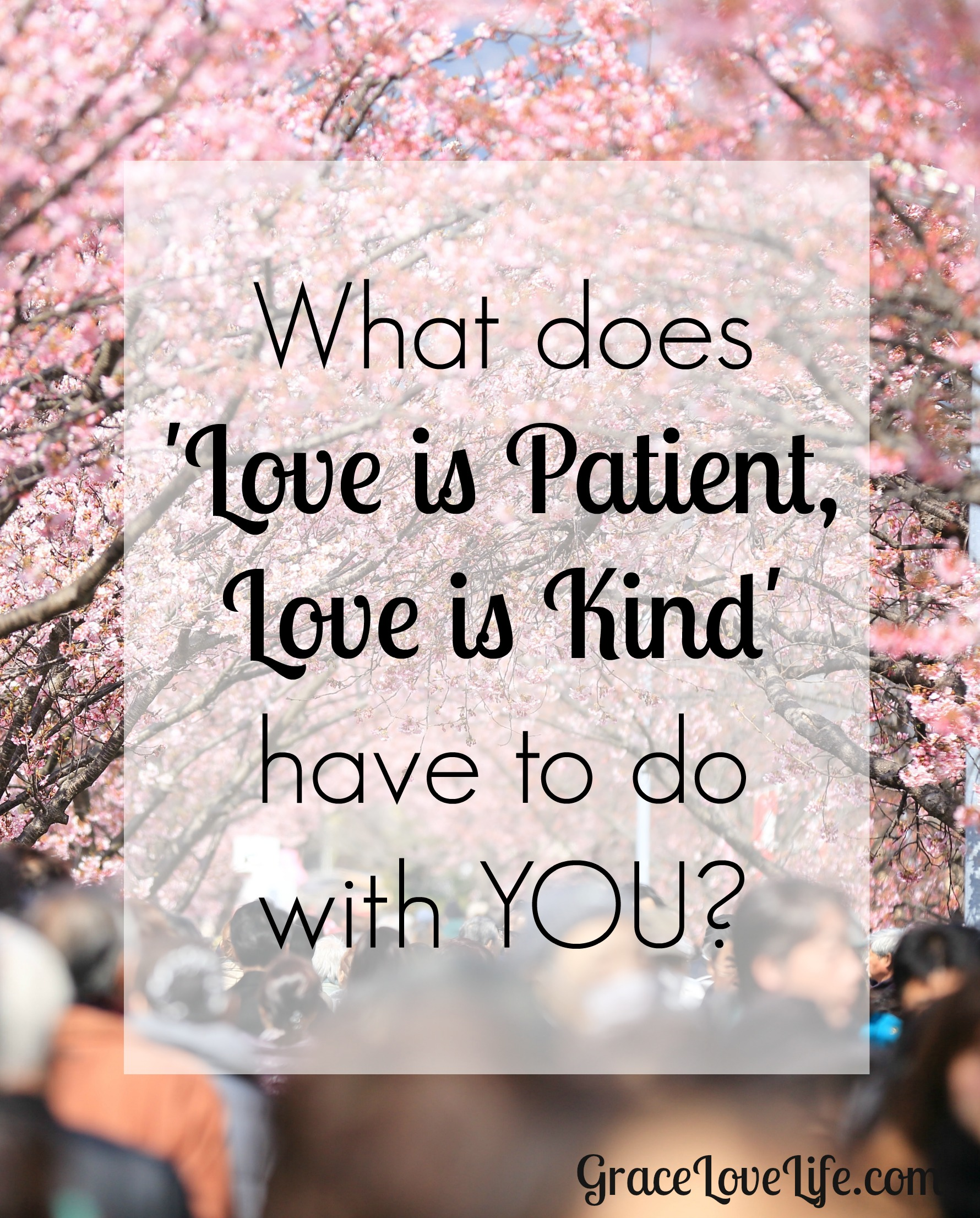 Love Is Patient Quote What Does 'love Is Patient Love Is Kind' Have To Do With You