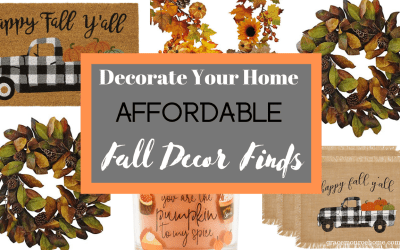 Affordable Fall Decor Finds