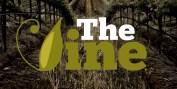 TheVine_logo1small