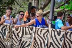 African Safari in Costa Rica?!