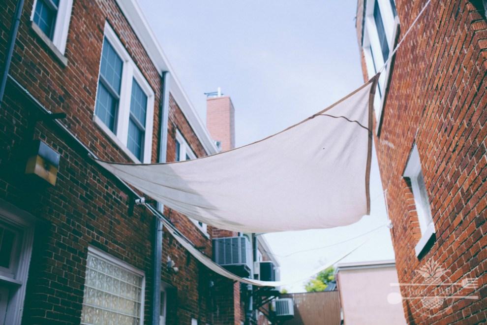 ally canopy