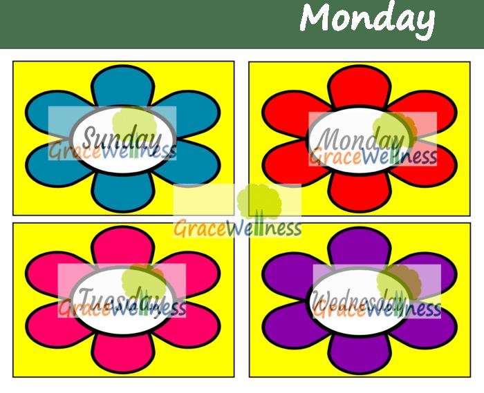 days of the week flashcard pdf printable download