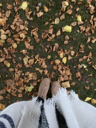 A rather autumnal looking photo!
