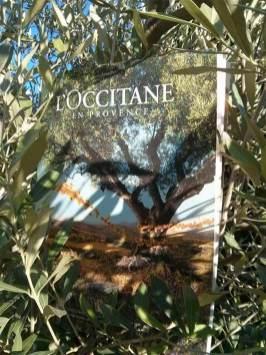 Loccitane-en-provence-2