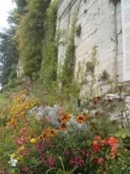 france-flowers