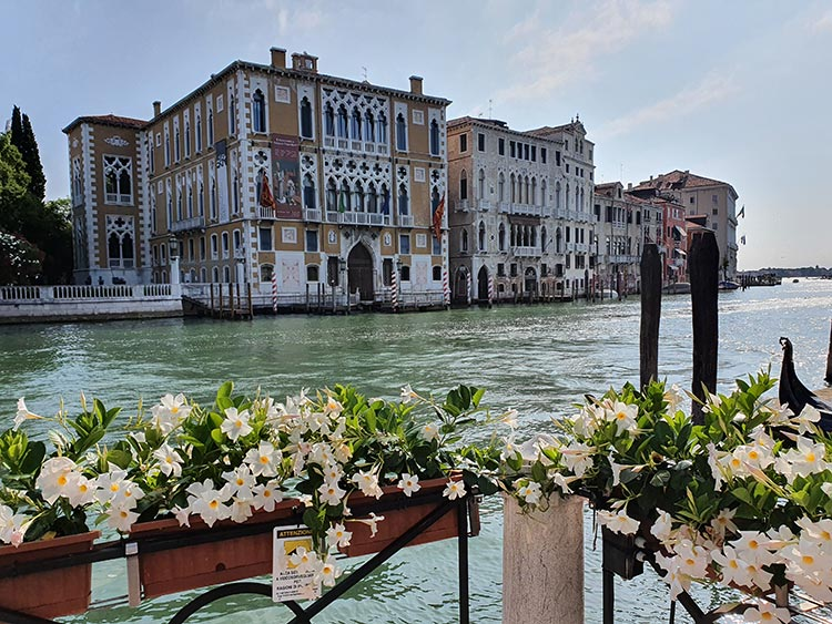 Venice grand canal 2020 covid 19 italy (1)