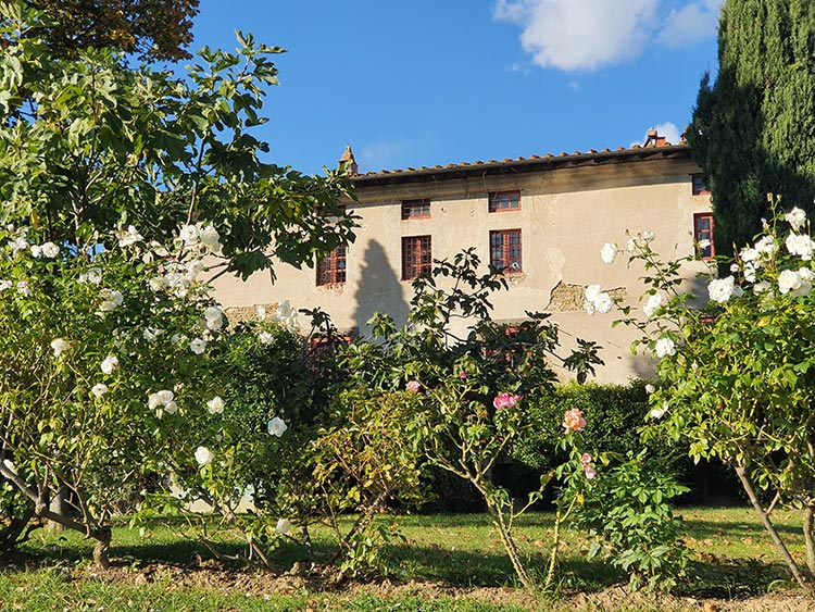 Fattoria Mansi Bernardini Lucca Tuscany (1)
