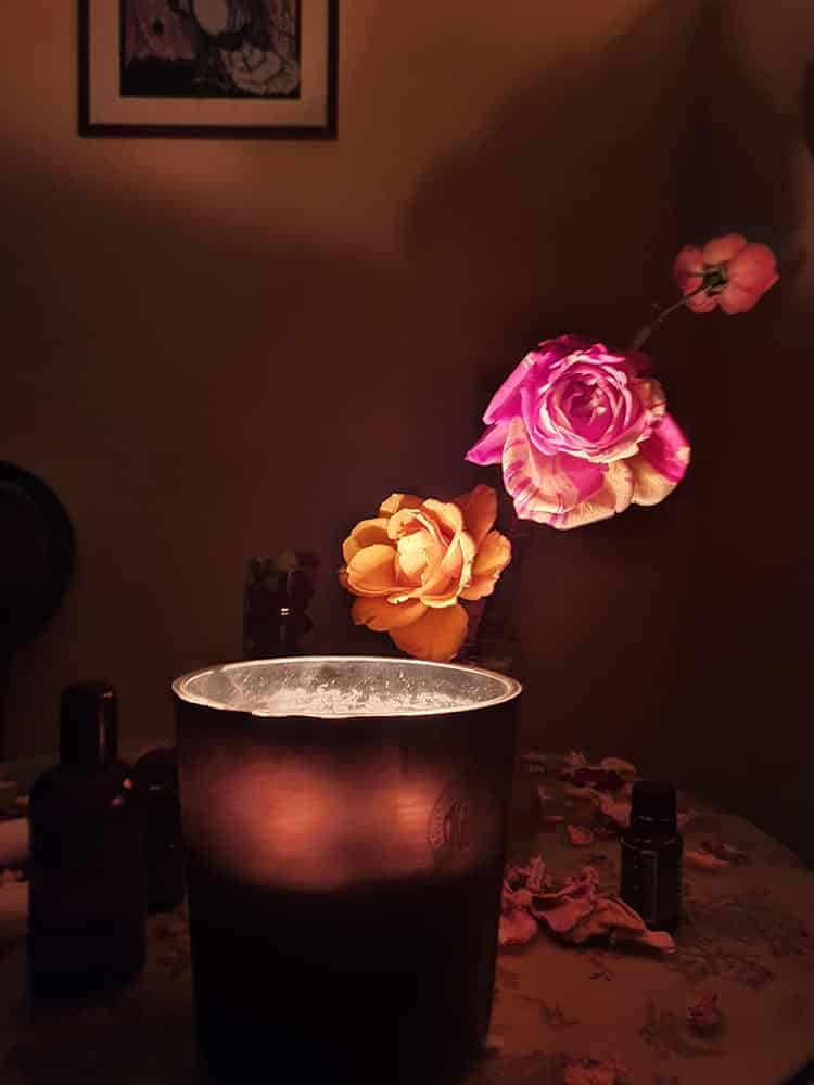Roses and Candles Gracie Opulanza