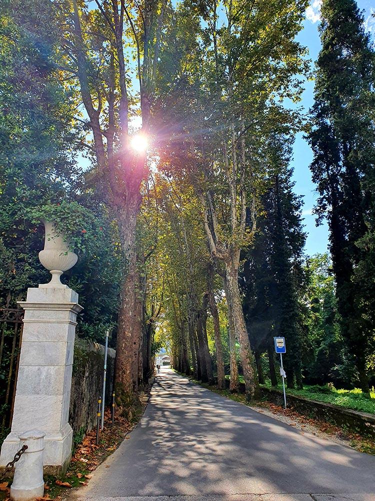Villa Reale Tuscany Lucca Marlia (4)