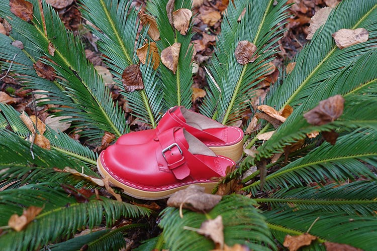 Caretti Clog Rosso red parrot
