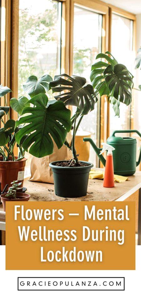 Flowers & Nature - My Mental Wellness During Lockdown