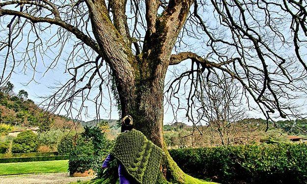 Wool – Moss Green Blanket Cape