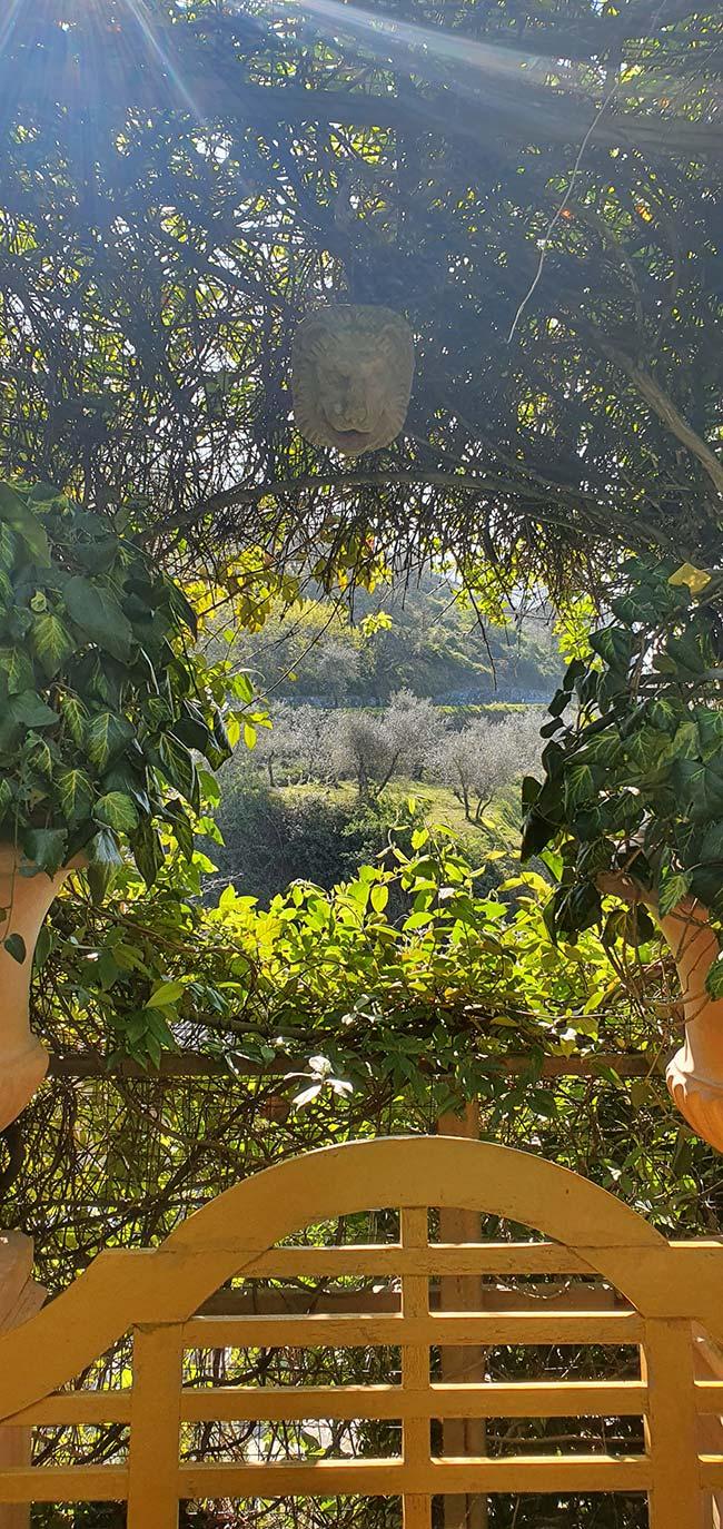 garden Tuscany italy