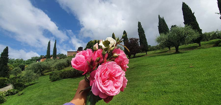 Tuscany flowers made in italy