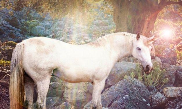 Unicorn Jewellery –  Joyful Accessories For Pandemic Life