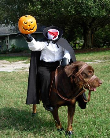 pet_halloween08_57867_xl
