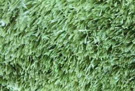 How my love of home started with a two-toned green shag rug …
