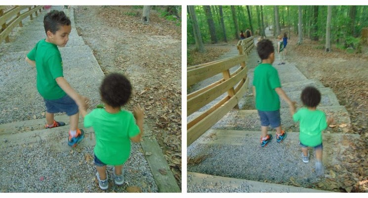 Toddler Chronicles: Top Five