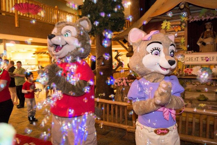 Family Fun with Great Wolf Lodge: Spring-a-Palooza