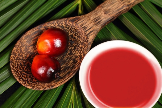 Red Palm Oil and It's Fat-tastic Health Benefit