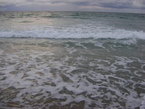 Florida 095
