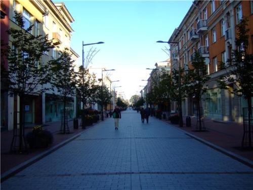 A) Siauliai streets