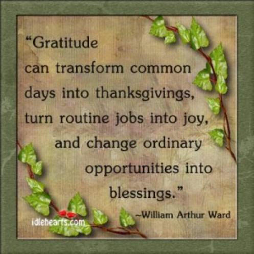 Gratitude 19