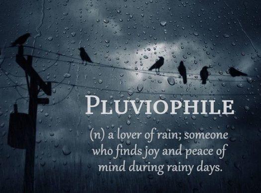 L rain lover