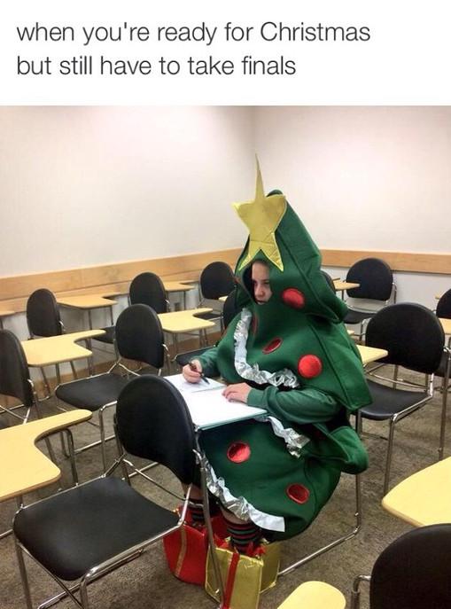 Final Exams During Christmas Memes Grade Calculator
