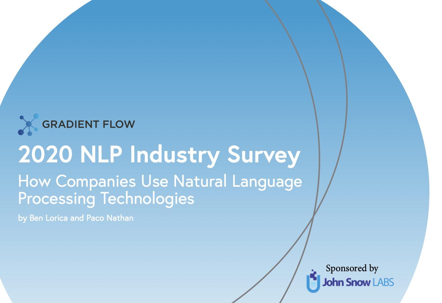 2020 NLP Survey cover