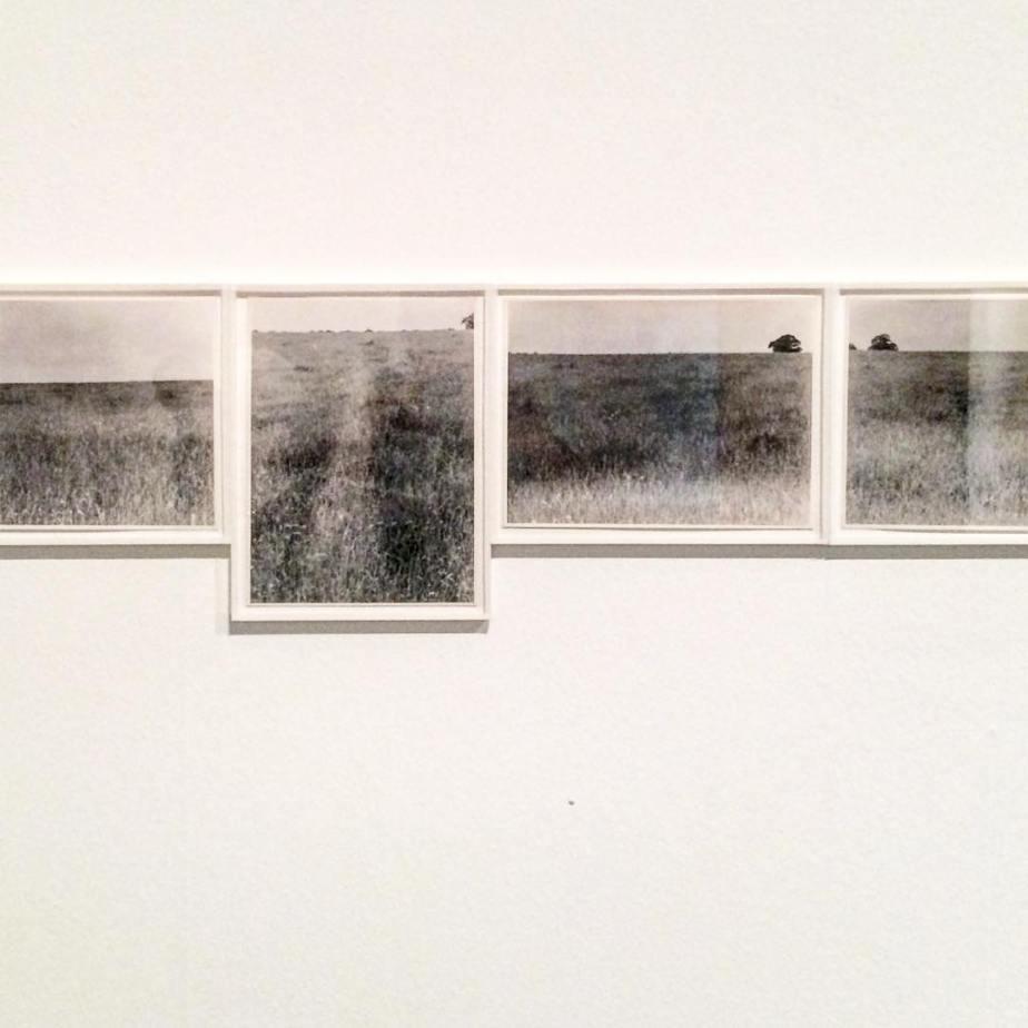 Art & Language. Temperature Show.  1966-1967.
