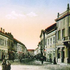 Dunavska ulica