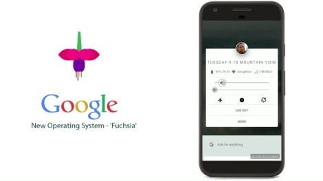 fushia google