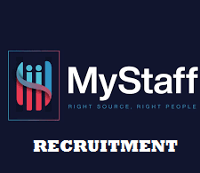 Business Manager (Credit and Risk management) at MyStaff Consulting