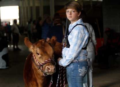 Carter Willard and her heifer, Athena, pause before entering the competition arena while her mom grabs her competitor's number. Willard realized last minute she was wearing her number from a different competition, so she had to wait for her mom to bring her the correct one. Willard, 12, from Perry, Georgia, was among several competitors showing their heifers at the Georgia National Fair in Perry, Georgia, Saturday, October 10, 2015. She has been showing her family's cows for four years now. (Photo/Rachel Harris, rharris@uga.edu)