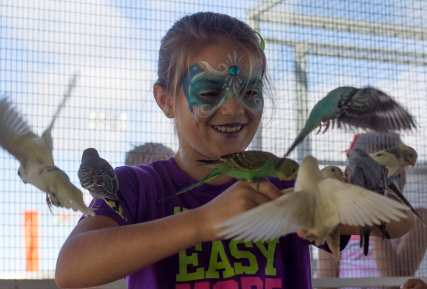Gracie Swain, 10, of Hazelhurst, Georgia, plays in a parakeet exhibit at the Georgia National Fair in Perry, Georgia, on Saturday, October 10, 2015. Eudora Farms, who set up the exhibit, owns a drive-through petting zoo to educate visitors about exotic animals from around the world. (Photo/Rachel Eubanks, www.rachel-eubanks.com)