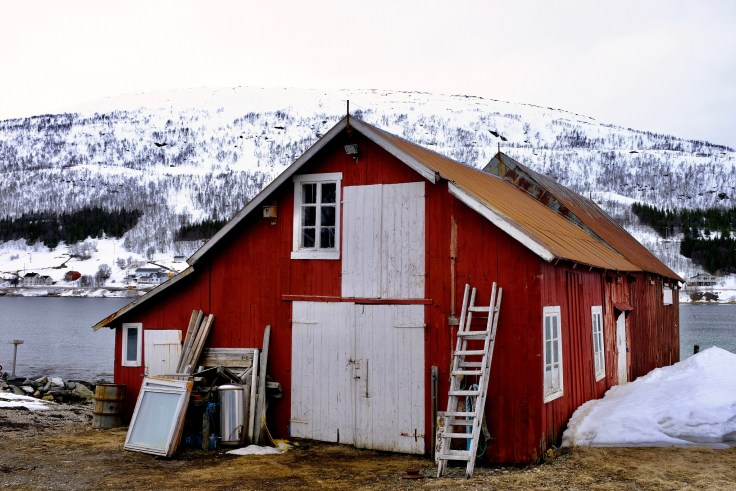 Norwegian Fishing Barn