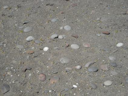Maori oven stones (charred) with fresh greywacke beach stones in a dune hollow