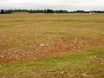 red faced terraces could just be showing drought effect but it's more to do with....