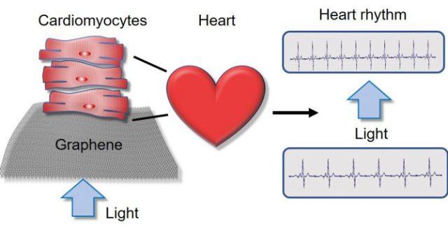 Nanotools Bioscience