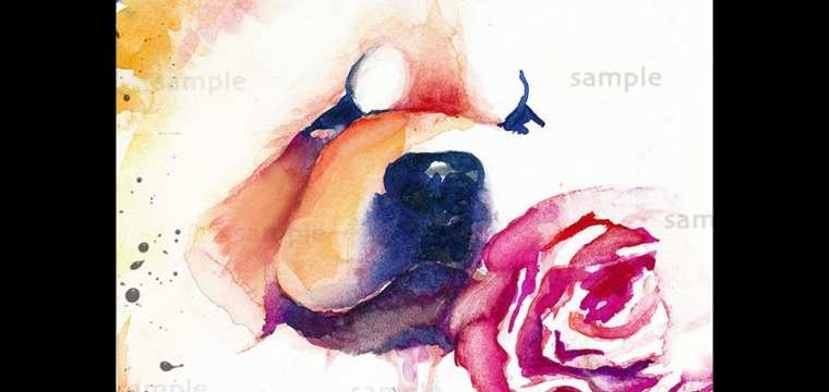 CYBER MONDAY EXCLUSIVE! New Watercolor print available this week only.