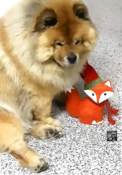 lil xmas fox