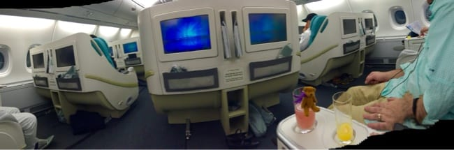 THE AMAZING SEATS IN BUSINESS CLASS.  LITTLE BEAR LOVES THE GUAVA JUICE